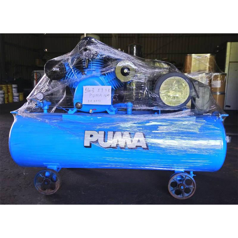 593號 PUMA 開放型往復式 - 10HP